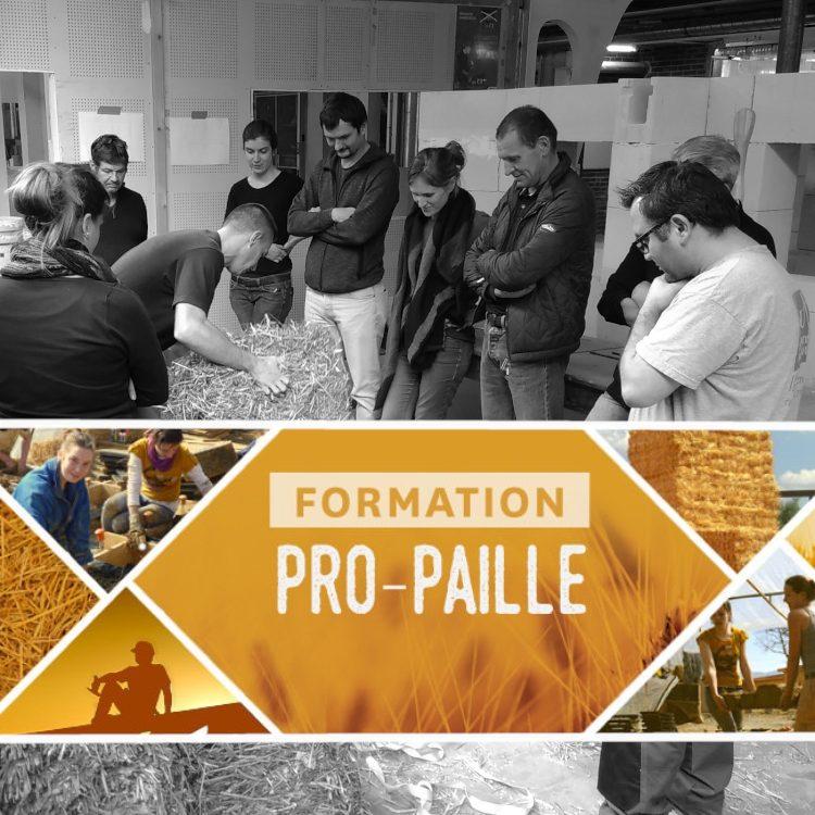 Montage photo pour la formation ProPaille